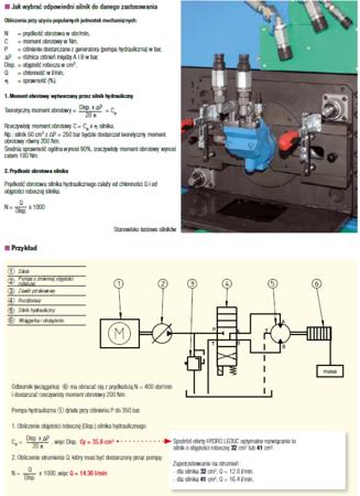 DOSTAWA GRATIS! 01538887 Silnik hydrauliczny tłoczkowy Hydro Leduc (objętość robocza: 12 cm³, maksymalna prędkość ciągła: 8000 min-1 /obr/min)